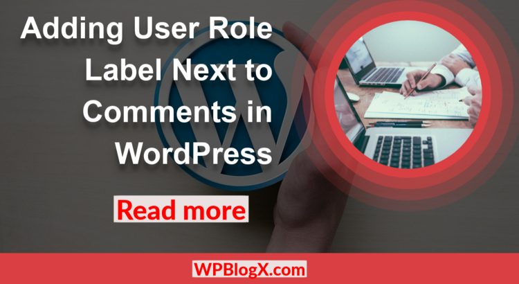 Adding User Role Label Next to Comments WordPress
